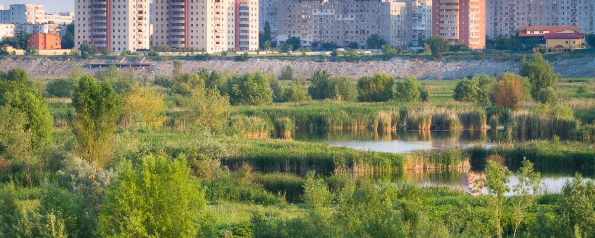 Lacul_Vacaresti